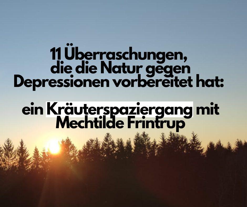 Read more about the article 11 Überraschungen, die die Natur gegen Depressionen vorbereitet hat: ein Kräuterspaziergang mit Mechtilde Frintrup